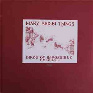 Many Bright Things - Birds Of Impossible Colors (Swim In An Open Sky) album mp3