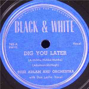 Buzz Adlam And Orchestra - Dig You Later / I Don't Wanna Do It Alone album mp3