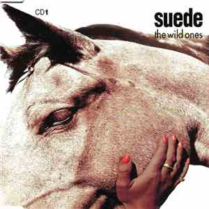 Suede - The Wild Ones album mp3